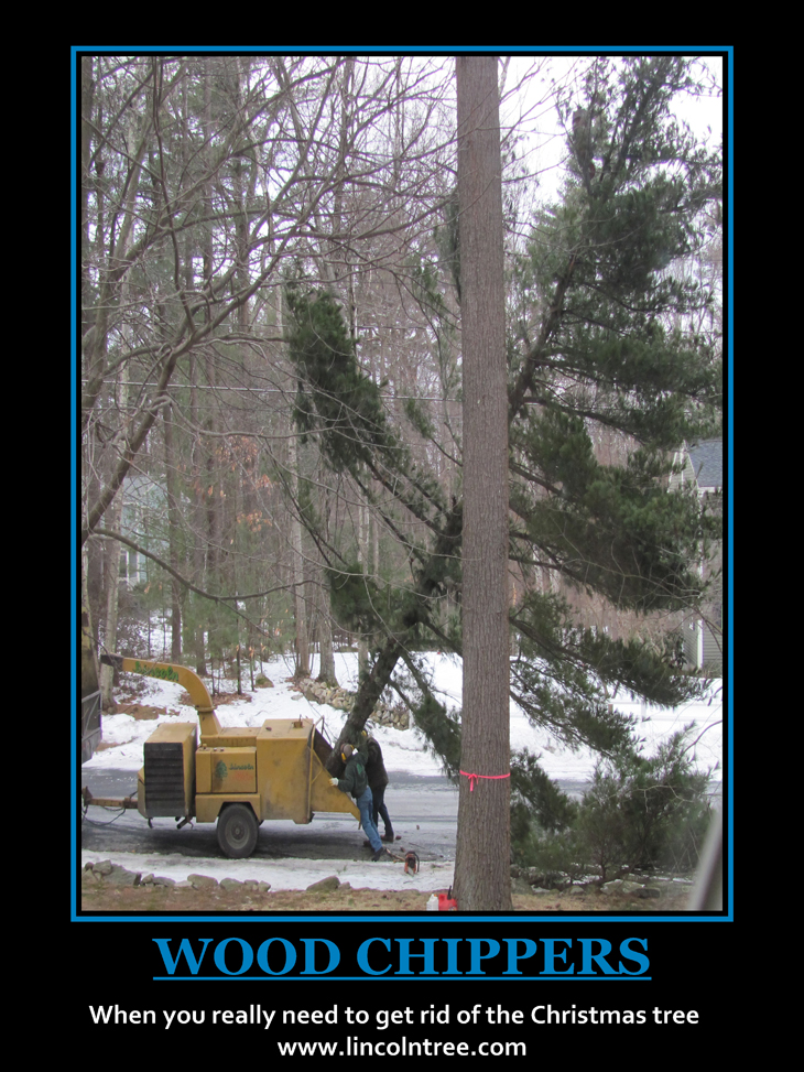 Wood Chippers When you really need to get rid of the Christmas tree